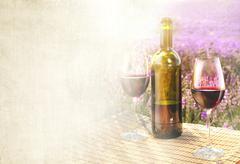 Bottle of wine. Stock Photos