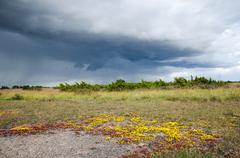 colourful landscape with bad weather coming up - stock photo