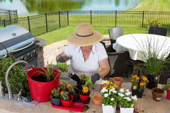 lady gardener potting up new plants on a patio - stock photo