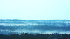 Evening fog layers lies the forest. Stock Footage