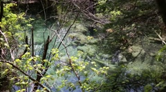 A beautiful clear blue stream at the jiuzhaigou valley national park in china Stock Footage