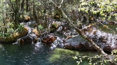 Creek at the jiuzhaigou valley national park in china dolly shot Stock Footage
