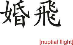 Chinese Sign for nuptial flight - stock illustration