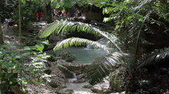 Tropical setting Stock Footage