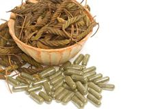 east indian screw tree,dry herb and pills - stock photo