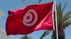 Waving red flag of Tunisia over palm tree, Sousse city - stock footage