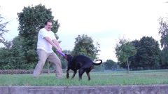 Man playing with dog outdoors Stock Footage
