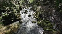 Creek in deep dark mountain forest Stock Footage