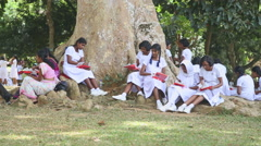 Local school girls eating their lunch in the Botanical Garden in Kandy. Stock Footage