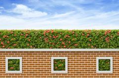 Shrubs and brick fence on blue sky background Stock Photos