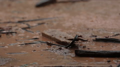 Raining at construction and demolition site Stock Footage