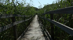 Walking a bridge in the reed, POV - stock footage