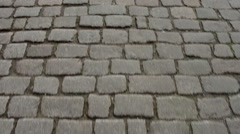 Pathway to Zwinger in Dresden Stock Footage