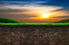 Soil and grass in sunset background Stock Illustration