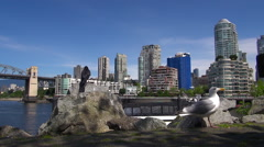 Vancouver cityscape with seagull Stock Footage