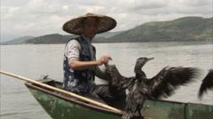Cormorant fishing, Dalai lake, Yunnan, China Stock Footage