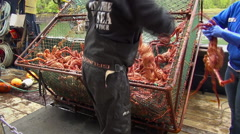 Alaskan king crab fishing boat - Alaska Stock Footage