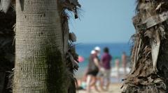 Salou Spain palm trees beach  Stock Footage