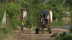 Horse drawn cart approaches, leafy suburb, Havana Stock Footage