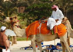 Arab man sitting on a camel on the beach in dubai Stock Photos