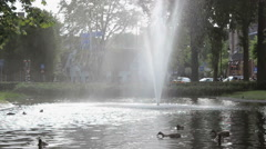 Pond with a huge fountain Stock Footage