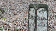 close up old signpost in Saxon Switzerland - stock footage