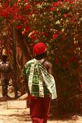 Woman and tree in Africa Senegal Stock Photos
