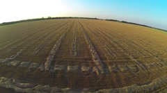 Hay Field Low Aerial Stock Footage