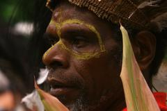 Feast Papuan and Tradition in New Guinea Stock Photos