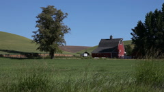 Farmland in eastern Washington state, USA Stock Footage