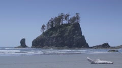Third Beach, La Push, Washington Stock Footage