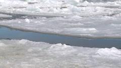 Leopard seal (Hydrurga leptonyx) patrols surface of ice hole, Cape Washington Stock Footage