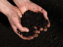 Handful of soil Stock Photos