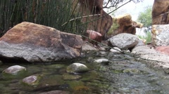 Water Flowing Over Rocks - Spring Creek - Zen Like - stock footage