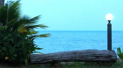 Branches of palm trees sway in the breeze on cloudy day at sea and lantern. Stock Footage