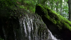 Small green waterfall in the forest in slow motion Stock Footage