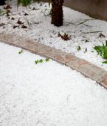 hailstorm in the garden - stock photo