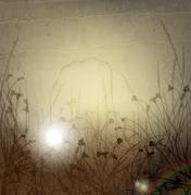 wild weeds - stock illustration