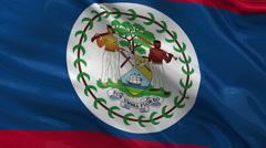 Flag of Belize seamless loop Stock Footage