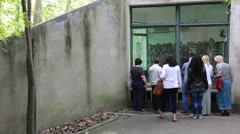 Tourists watching pandas at the giant panda breeding research center in cheng Stock Footage