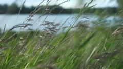 Stock Video Footage grass green lake landscape Stock Footage