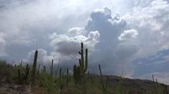 Magnificent 4K Clouds Time Lapse Arizona Desert Landscape Stock Footage