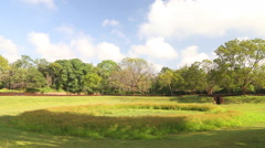 View of nature in Sigiriya, an ancient palace near the town of Dambulla. Stock Footage