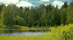 Stock Video Footage lake landscape 2 Stock Footage