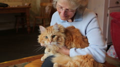 Senior woman holds and strokes maine coon cat Stock Footage