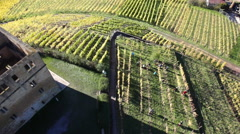 Aerial view of vineyard with fort and residential structures Stock Footage