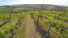 flying over a vineyard on the hill aerial - stock footage