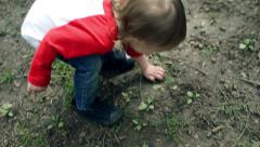 Little Boy Digs In The Dirt With His Hands Stock Footage