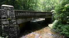 Bridge over Moore Creek, Pisgah National Forest, North Carolina 1080p Stock Footage