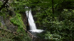 Courthouse Falls, Pisgah National Forest, North Carolina 1080p Stock Footage